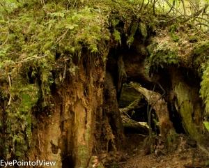 20130819-Granitefalls_1546