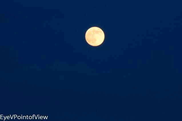 20130622-full_moon9777