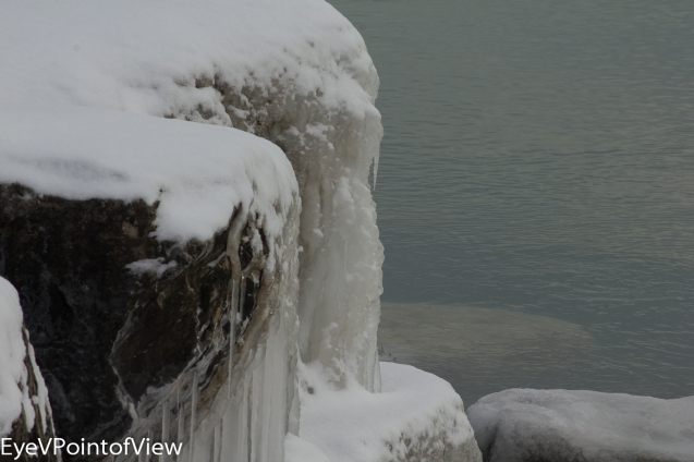 20131226-winter_morn_3997