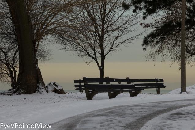 20131226-winter_morn_4027