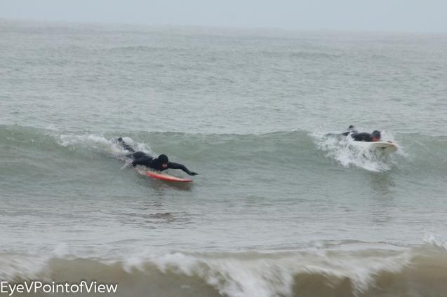 20131229-surfers_4272