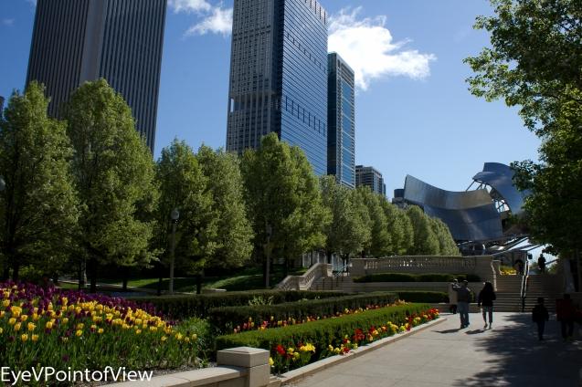 20130512-DowntownFlwrs_8583
