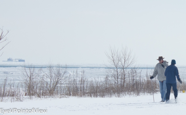 20140202-ChicagoWntr_4575