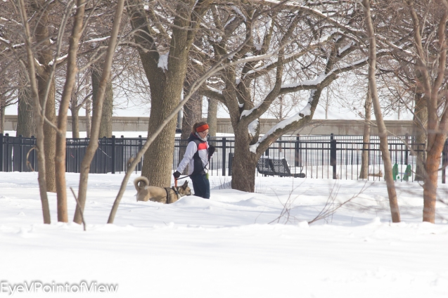 20140202-ChicagoWntr_4702