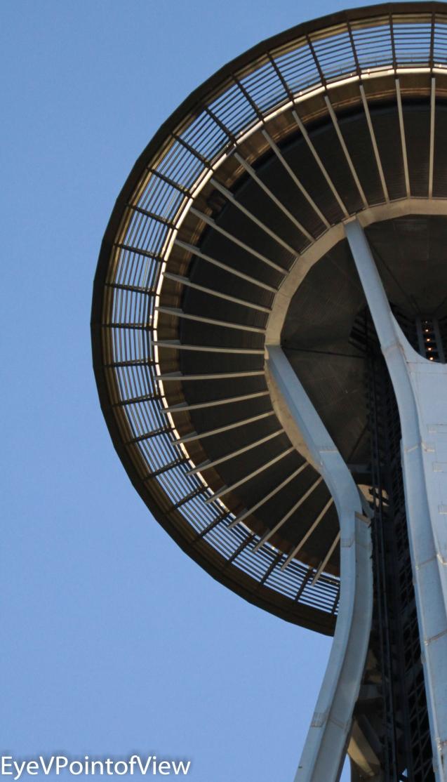 20130217-Seattle Pix_110