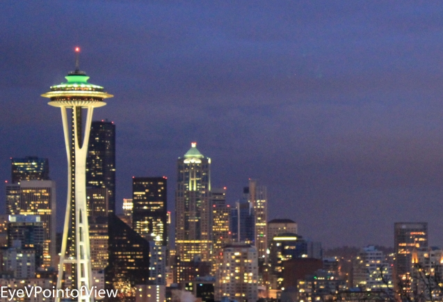 20130217-Seattle Pix_132